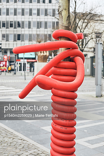 Red plastic hose on a tree - p1540m2259029 by Marie Tercafs