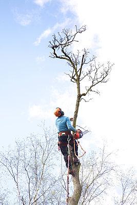 Baumpflege - p606m938035 von Iris Friedrich