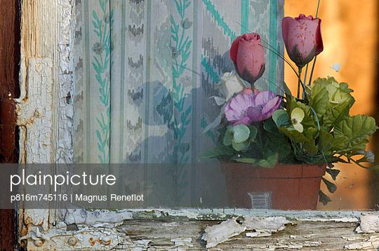 p816m745116 von Magnus Reneflot