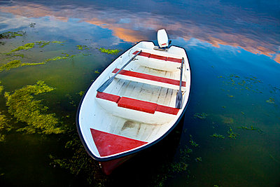 View of a boat in algae with reflection of clouds in the water - p1025m788509f by Mujo Korach