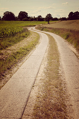 Path - p382m832070 by Anna Matzen
