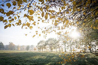 Landschaft - p403m2053852 von Helge Sauber