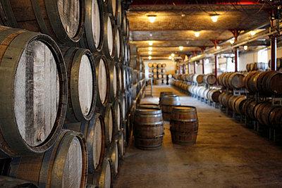 Oak barrels in a winery - p30118807f by Marc Volk