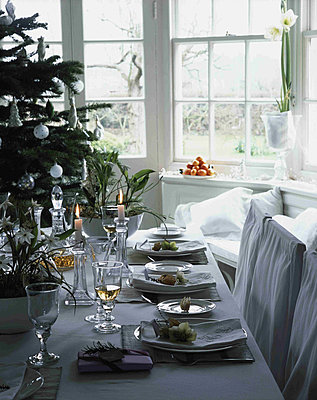 Dining table with place settings and Christmas tree behind - p349m790725 by Polly Eltes