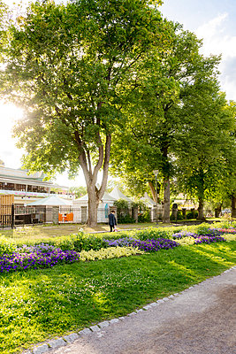 Sweden, Uppland, Uppsala, Stadsparken, Colorful flowers by pedestrian walkway - p352m1350069 by Werner Nystrand