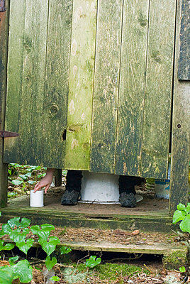 Woman in Outhouse, Pacific Rim National Park Reserve, BC - p6071441 by Josh McCulloch