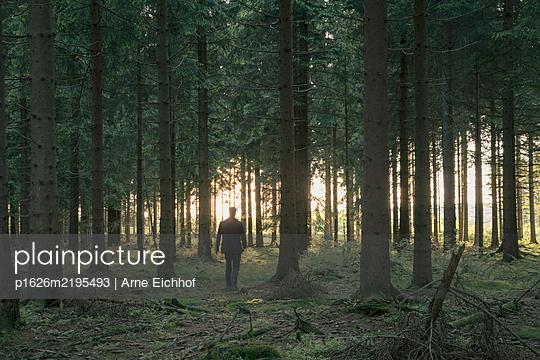 p1626m2195493 by Arne Eichhof