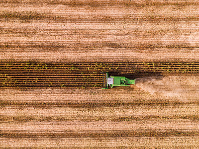 Serbia, Vojvodina, Combine harvester on a wheat, aerial view - p300m1568351 by oticki