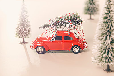 Mit dem Weihnachtsbaum unterwegs - p464m1355409 von Elektrons 08