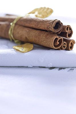 Cinnamon Sticks - p6692143 by David Harrigan