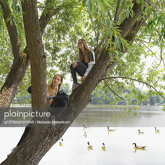 Two girls sitting in tree on the lakefront - p1376m2101098 by Melanie Haberkorn