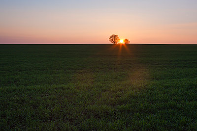 Sunset in the countryside - p1057m1440433 by Stephen Shepherd