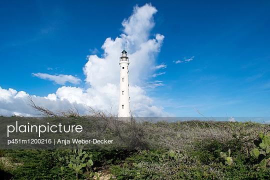 California-Leuchtturm - Leuchturm von Aruba - p451m1200216 von Anja Weber-Decker