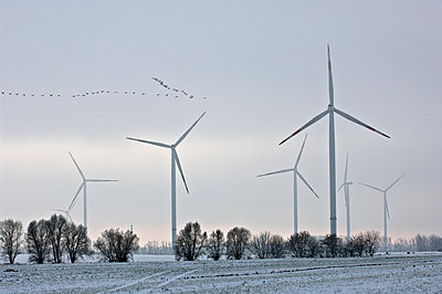 Windpark im Winter - p1099m882607 von Sabine Vielmo