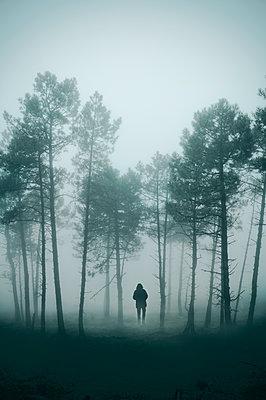 Mann geht im Nebelwald - p470m1190618 von Ingrid Michel