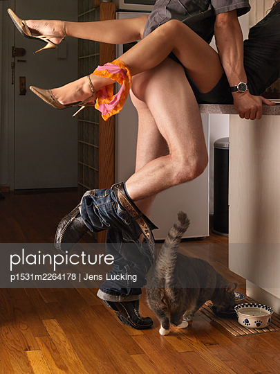 Couple Having Sex On Kitchen Counter, Cat Eating From Bowl Below - p1531m2264178 by Jens Lucking