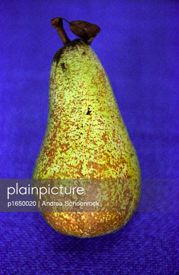 Gelbe Birne - p1650020 von Andrea Schoenrock