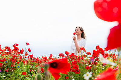 Smiling beautiful woman with red poppy while standing on field against clear sky - p300m2197757 by Daniel Ingold