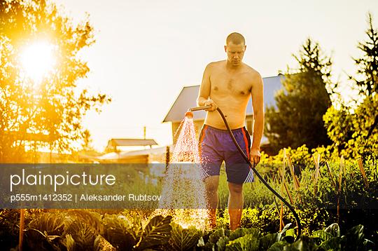 Caucasian man watering plants in backyard - p555m1412352 by Aleksander Rubtsov