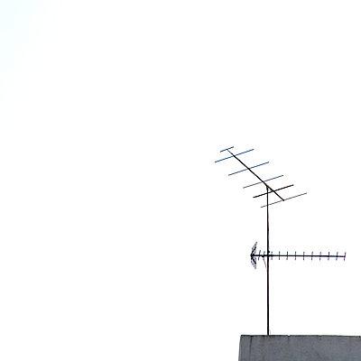 Antenna - p748m754979 by Dirk Brömmel