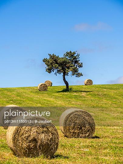 Heuballen auf einem Feld in  Frankreich - p813m1159513 von B.Jaubert