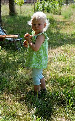 Mädchen bei der Apfelernte - p116m1592014 von Gianna Schade