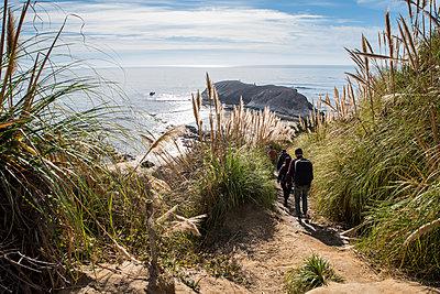 Rear view of hikers walking amidst plants on field against sea - p1166m1545261 by Cavan Social