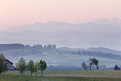Germany, Bavaria, Swabia, Allgaeu, Oberallgäu, Buchenberg, View of morning at landscape - p30020008f by Martin Siepmann