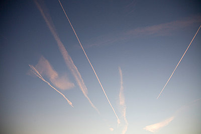 Sky at sunrise with various vapour trails - p3881899 by Mark Sherratt