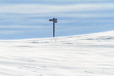 Eiszeit - p417m1116067 von Pat Meise