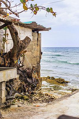 Hütte am Strand - p075m1564302 von Lukasz Chrobok