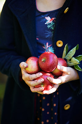 Girl holding apples - p312m1521939 by Anna Kern