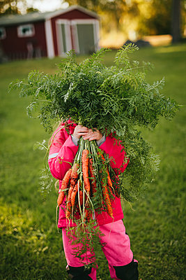 Girl holding bunch of carrots - p312m2191123 by Matilda Holmqvist