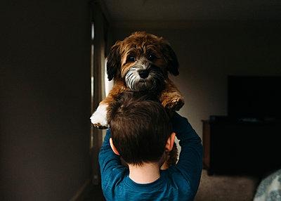 Portrait of dog carried by boy in darkroom - p1166m1489533 by Cavan Images