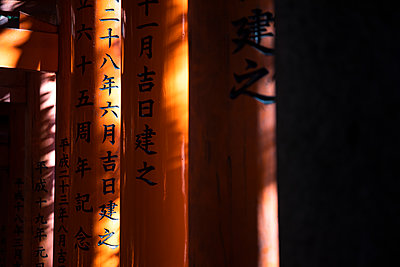Japan, Kyoto Prefecture, Kyoto City, Kanji on torii gates leading to Fushimi Inari-taisha temple - p300m2155098 by Andrés Benitez