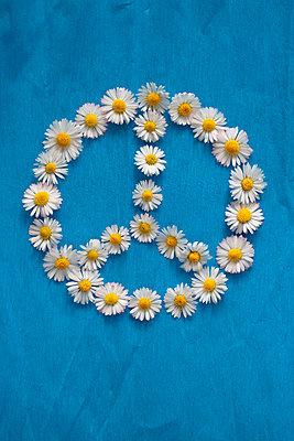 Peace Zeichen    - p450m1561850 von Hanka Steidle