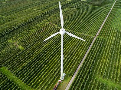Windenergie im Alten Land - p1079m2157723 von Ulrich Mertens