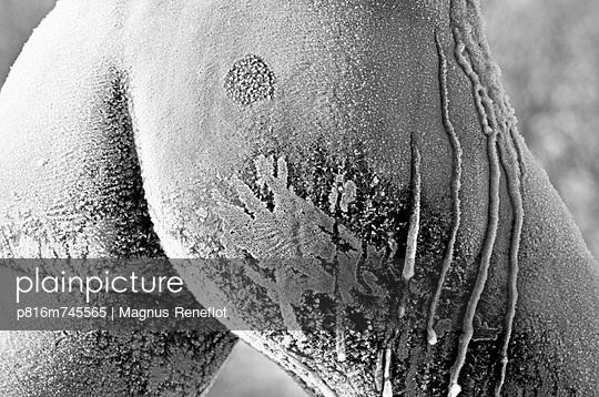 p816m745565 von Magnus Reneflot