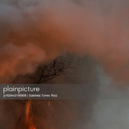 Volcán de Fuego, active volcano, Guatemala - p1624m2195908 by Gabriela Torres Ruiz