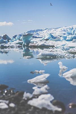 Gletscher - p916m1531984 von the Glint