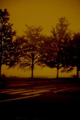 In the storm - p1028m1589558 von Jean Marmeisse