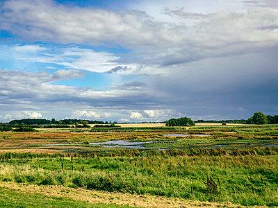 Fyn landscape - p382m2284017 by Anna Matzen