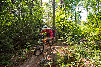Mountain biking in North Conway, New Hampshire. - p343m1218084 by Joe Klementovich