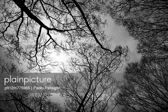 p912m775965 von Paolo Pellegrin