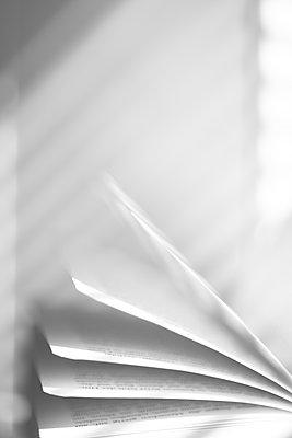 Geöffnetes Buch mit Schattenspiel - p1325m1465019 von Antje Solveig