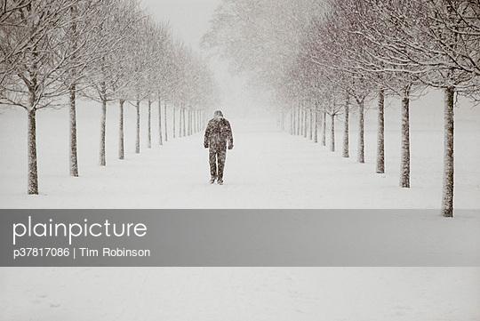 p37817086 von Tim Robinson