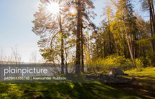 p429m1155748 von Aleksander Rubtsov
