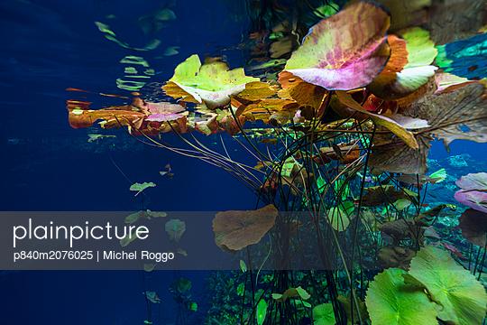 p840m2076025 von Michel Roggo