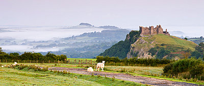 Carreg Cennen Castle at dawn on a misty summer morning, Brecon Beacons National Park, Carmarthenshire, Wales, United Kingdom, Europe - p8713054 by Adam Burton