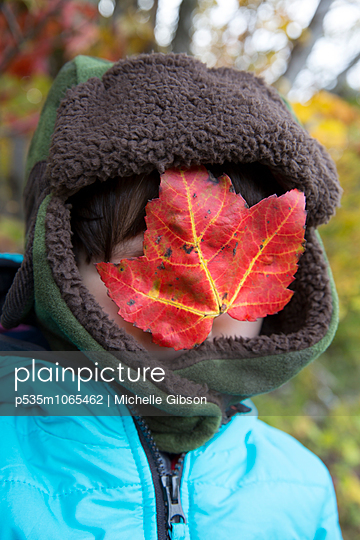 Fall - p535m1065462 by Michelle Gibson